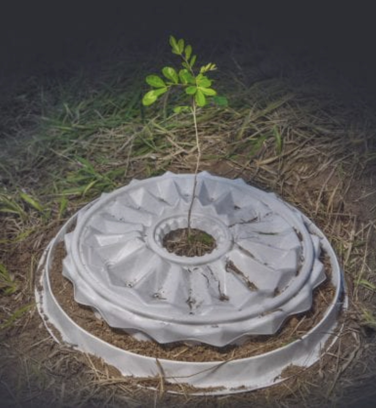 the biodegradable planter